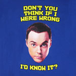 If I Were Wrong I'd Know It - Big Bang Theory T-shirt