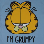Mr. Grumpy - Garfield T-shirt