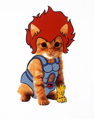 Lion-O Kitty - Thundercats T-shirt