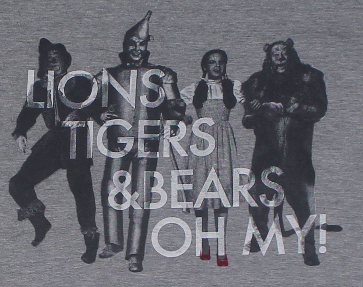 Lions, Tigers, And Bears - The Wizard Of Oz Juniors T-shirt