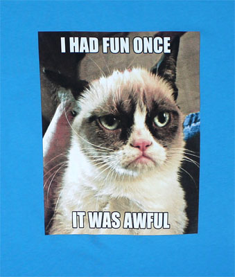 I Had Fun Once - Grumpy Cat Juniors T-shirt