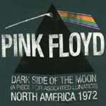 A Piece For Assorted Lunatics - Pink Floyd Sheer T-shirt