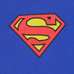 Superman Logo - DC Comics Youth T-shirt