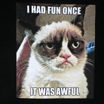 I Had Fun Once - Grumpy Cat T-shirt