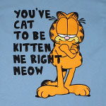 You've Cat To Be Kitten Me Right Meow - Garfield T-shirt
